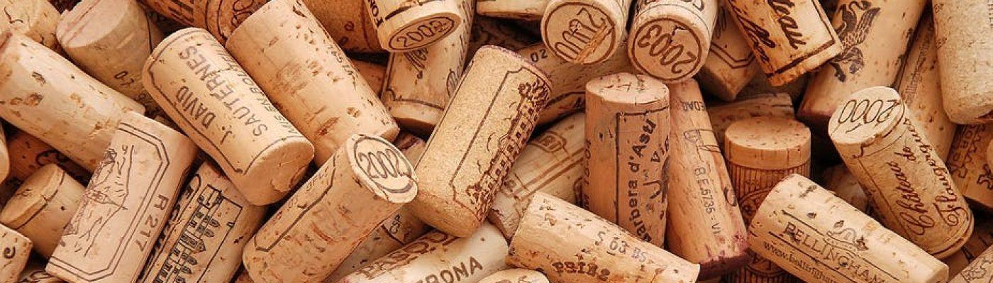 Tudo do Vinho