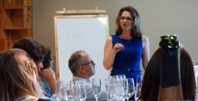 Curso Básico De Vinhos