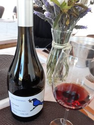 Viagem de Estudo_Ana Cristina Pinot Noir 2015 Villaggio Bassetti