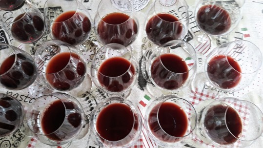 Vinho Banduria Tannat_por Marcia Amaral