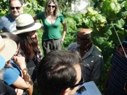 viagem de estudos_ vinícola santa eulália_por carlo giacomoni (1)