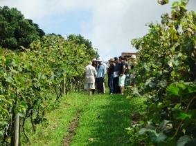 viagem de estudos_ vinícola santa eulália_por carlo giacomoni (4)