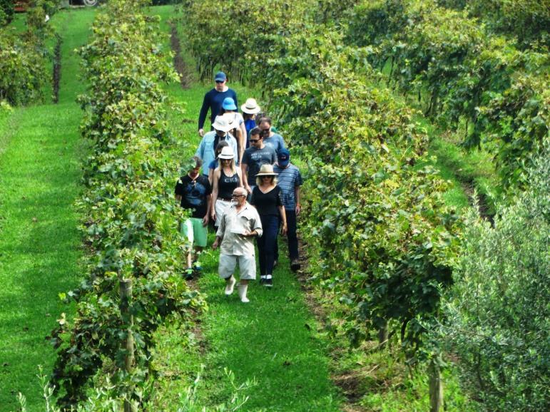 viagem de estudos_ vinícola santa eulália_por carlo giacomoni (6)