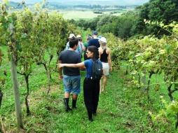 viagem de estudos_ vinícola santa eulália_por carlo giacomoni (7)